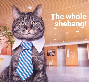 whole_shebang_img